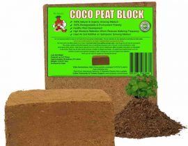 Mr Stacky Coco Peat