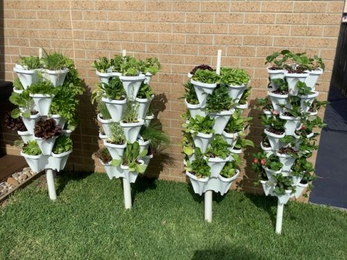Strawberry Planter – Free Standing Vertical Garden photo review