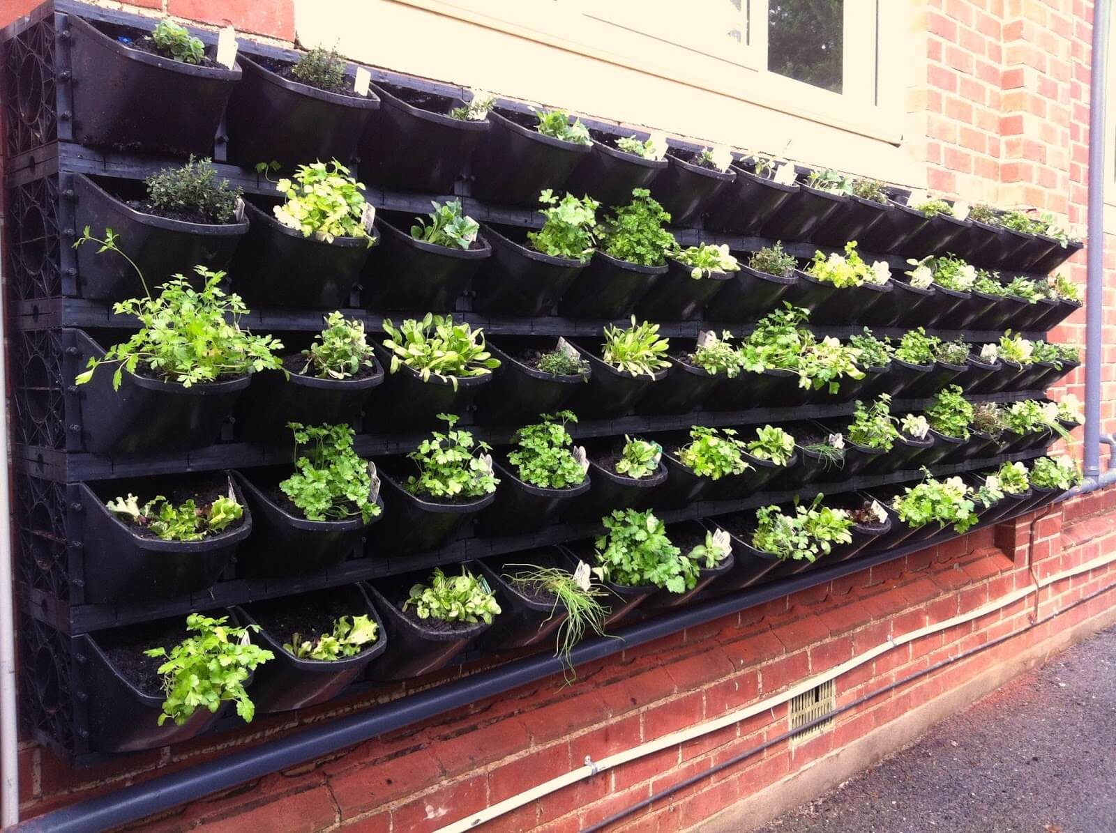 Vegetable Garden Ideas Mr Stacky Vertical Gardens