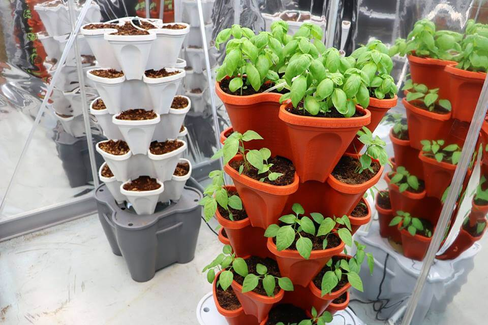 Mr Stacky Hydroponic Smart Farm