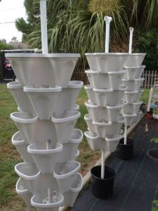 3 Tower Hydroponic Garden Kit photo review