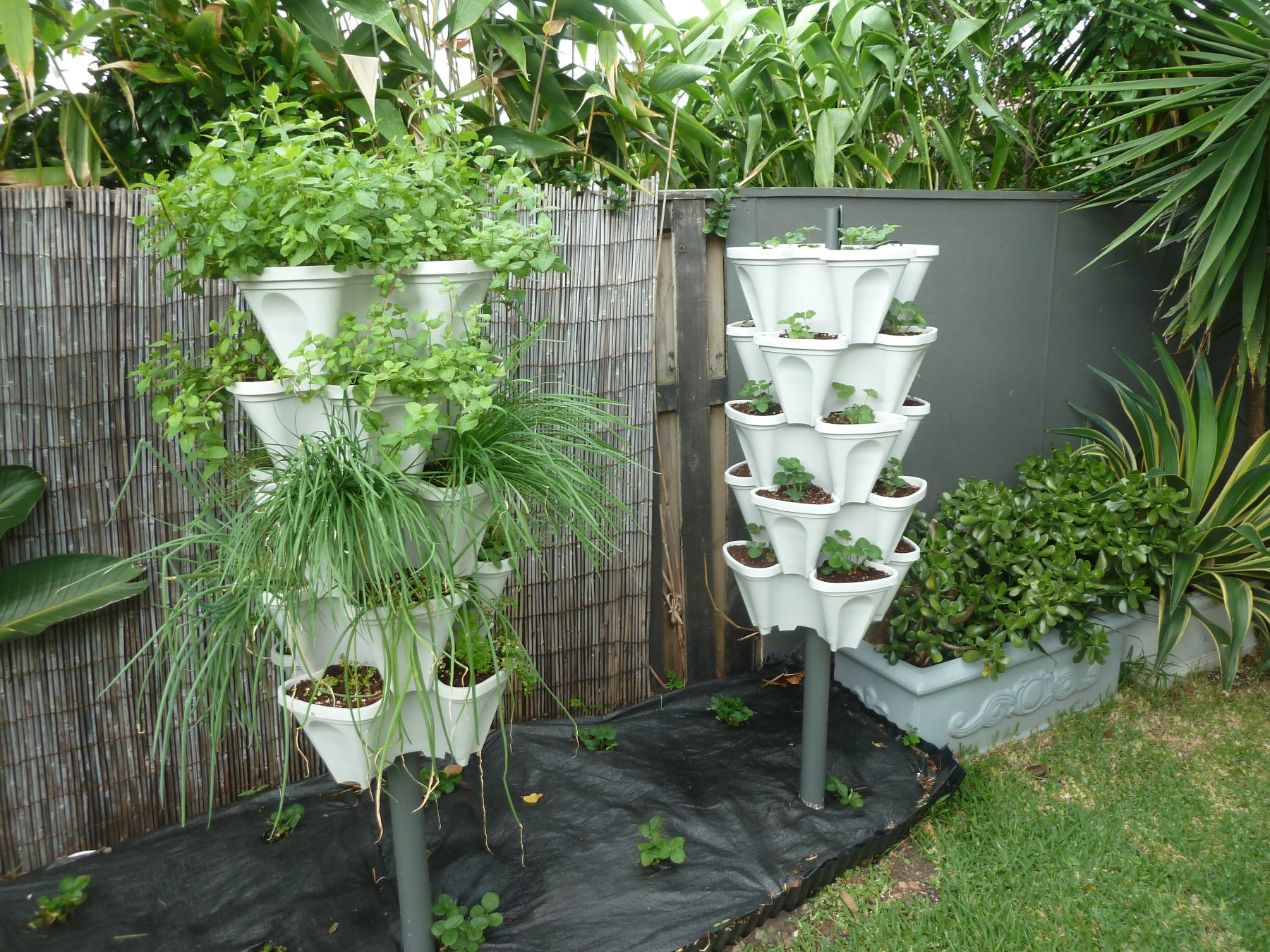 72 Plant DIY Hydroponics Kit - Don't bother with PVC pipes