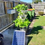 Smart Farm Hydroponic Tower Garden photo review