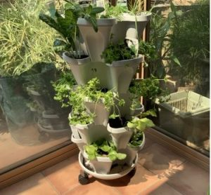 5 Tier Stacking Planter Vertical Garden Kit - 20 Plant Mr Stacky photo review